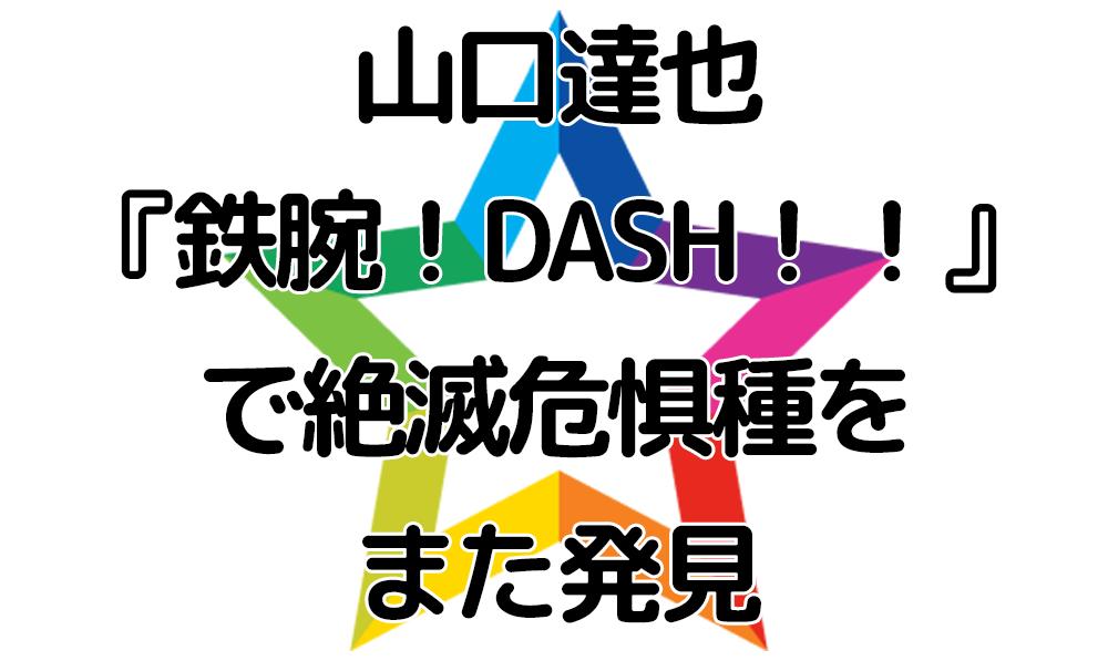山口達也『鉄腕!DASH!!』で絶滅危惧種をまた発見